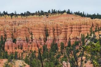 Bryce Canyon, AZ